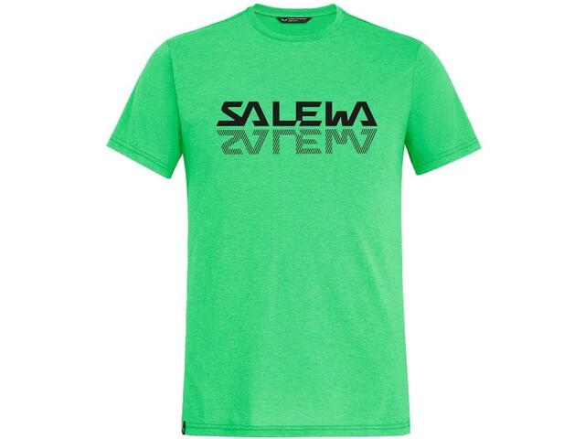 SALEWA Reflection Dri-Rel SS Tee Men, summer green melange